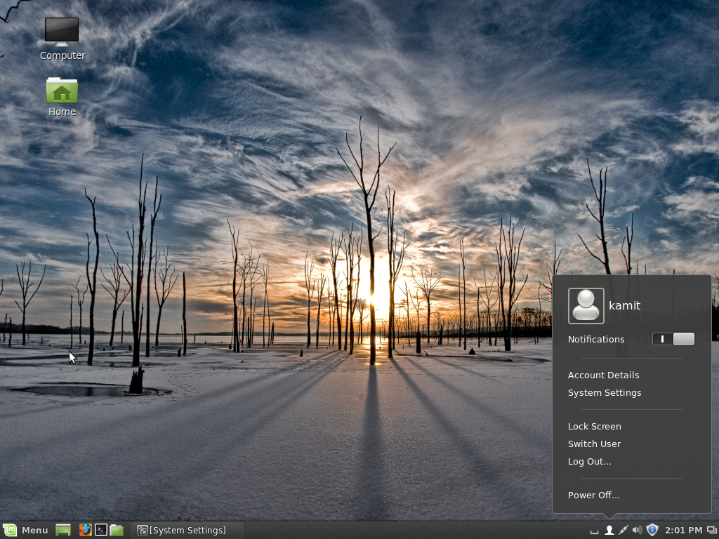 Linux Mint Cinnamon desktop user profile