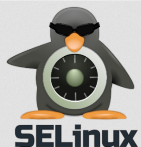 Chronicles of SELinux: Dealing with web content in unusual directories