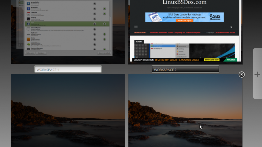 Linux Mint 17.3 Cinnamon expo