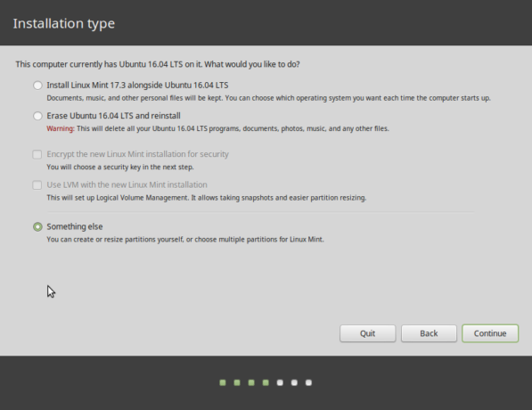 Linux Mint 17.3 Something else