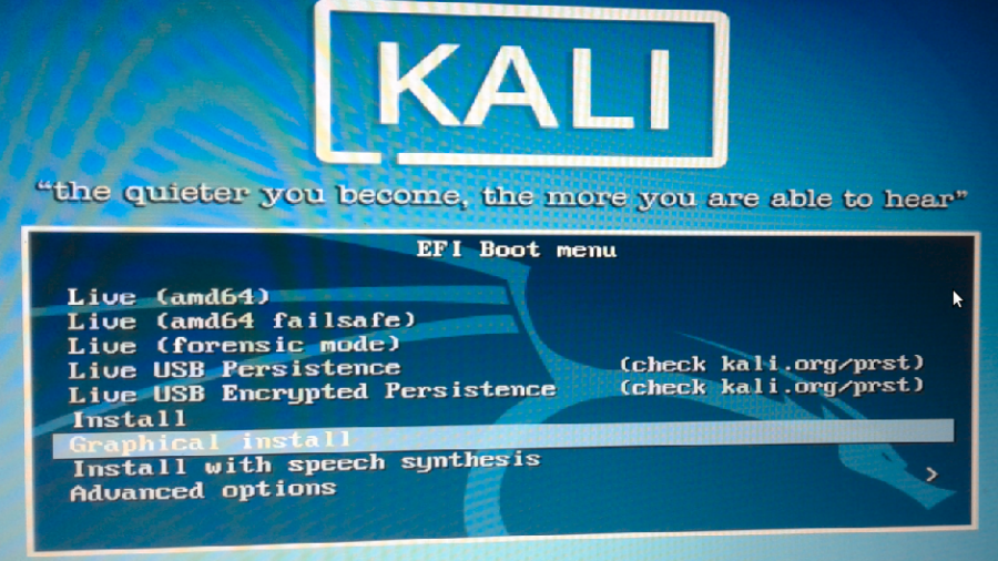Kali Linux Rolling 2016.2 boot options