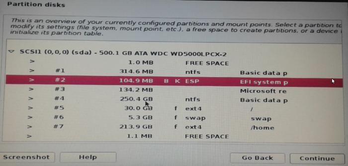 Kali Linux EFI System Partition
