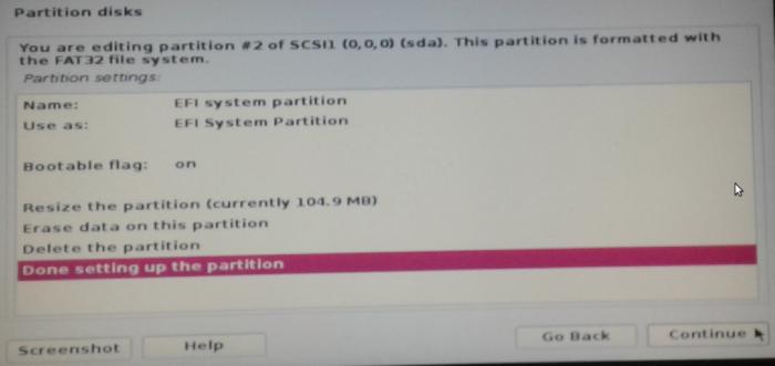 Figure 8: Configure Kali Linux Rolling 2016.2 EFI System Partition