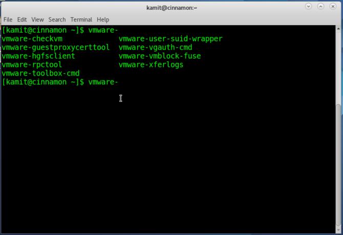 VMware tools Fedora 25 Cinnamon