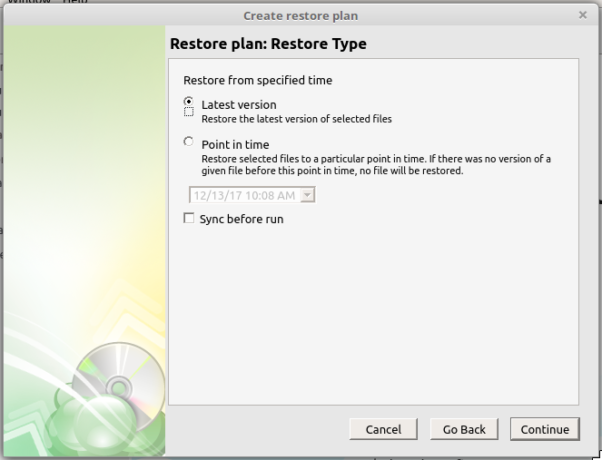 CloudBerry Backup restore type