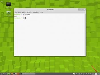Linux Mint Cinnamon Wordspaces