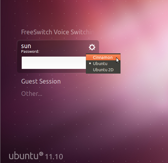 Cinnamon Ubuntu Login Screen