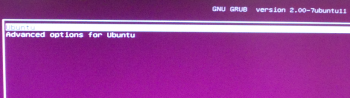 Ubuntu 12.10 UEFI boot menu