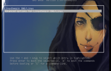GRUB background Linux Deepin