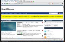 Qupzilla browser on LXQt