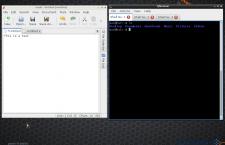 LXQt terminal app