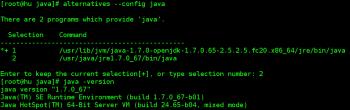 Oracle Java JRE