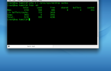ROSA Desktop Fresh R4 terminal