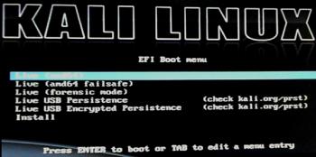 Kali Linux install menu