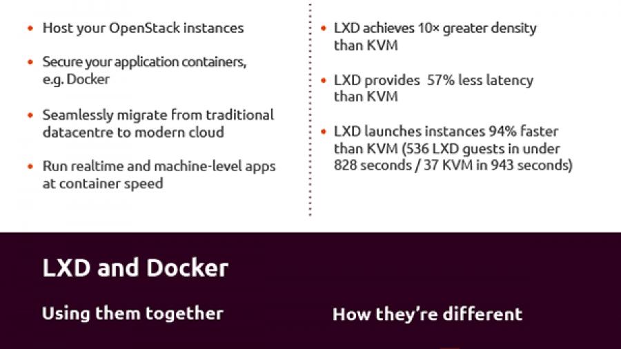 LXD Infographic