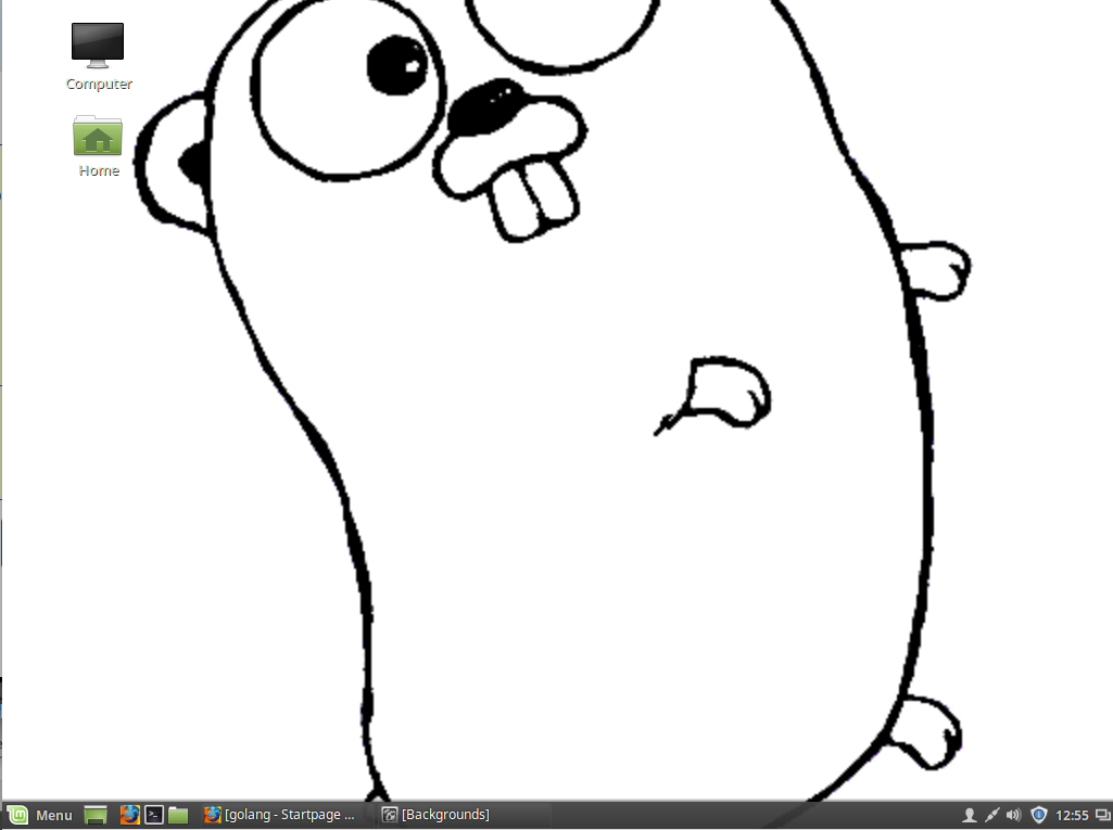 Golang on Linux Mint 18