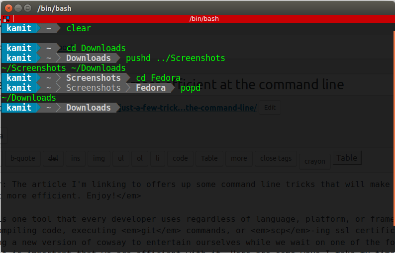 Linux Bash shell terminal emulator
